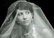 ТАМАДА,  Видеооператор на Свадьбу в Пензе Фотограф т.89273851709